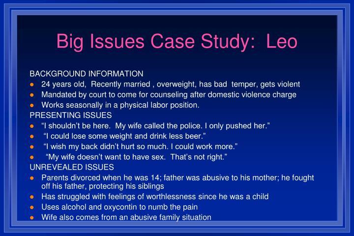 Big Issues Case Study:  Leo
