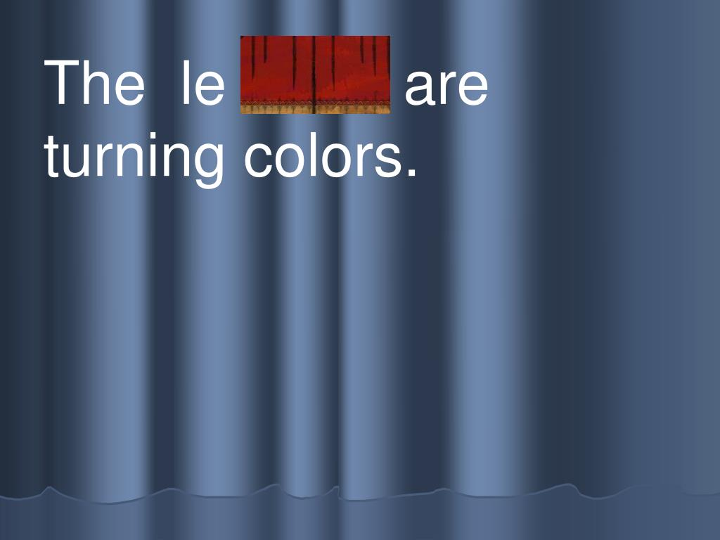 The  le aves  are turning colors.
