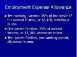 employment expense allowance