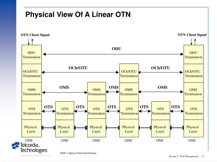 Physical View Of A Linear OTN