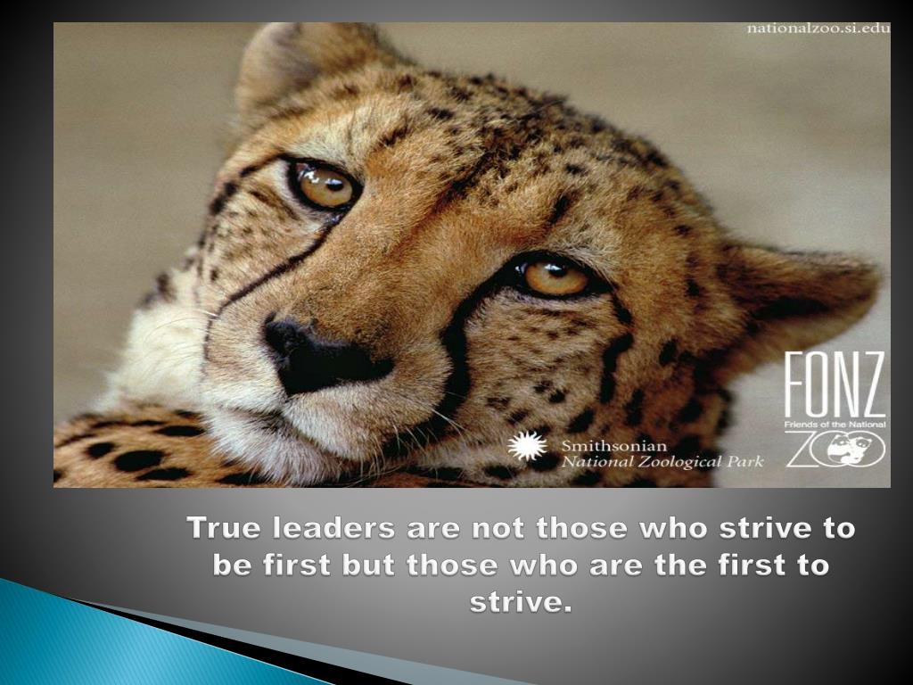 True leaders are not those who strive to be first but those who are the first to strive.