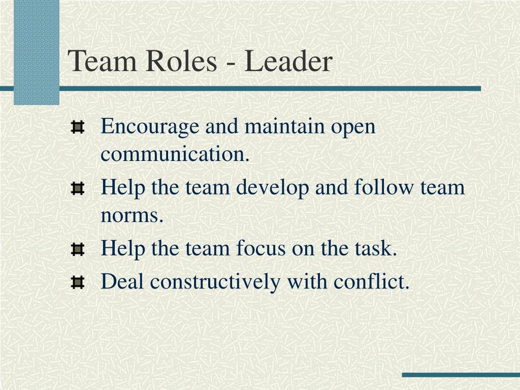 Team Roles - Leader