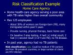 risk classification example home care agency