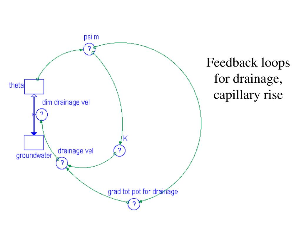 Feedback loops for drainage, capillary rise