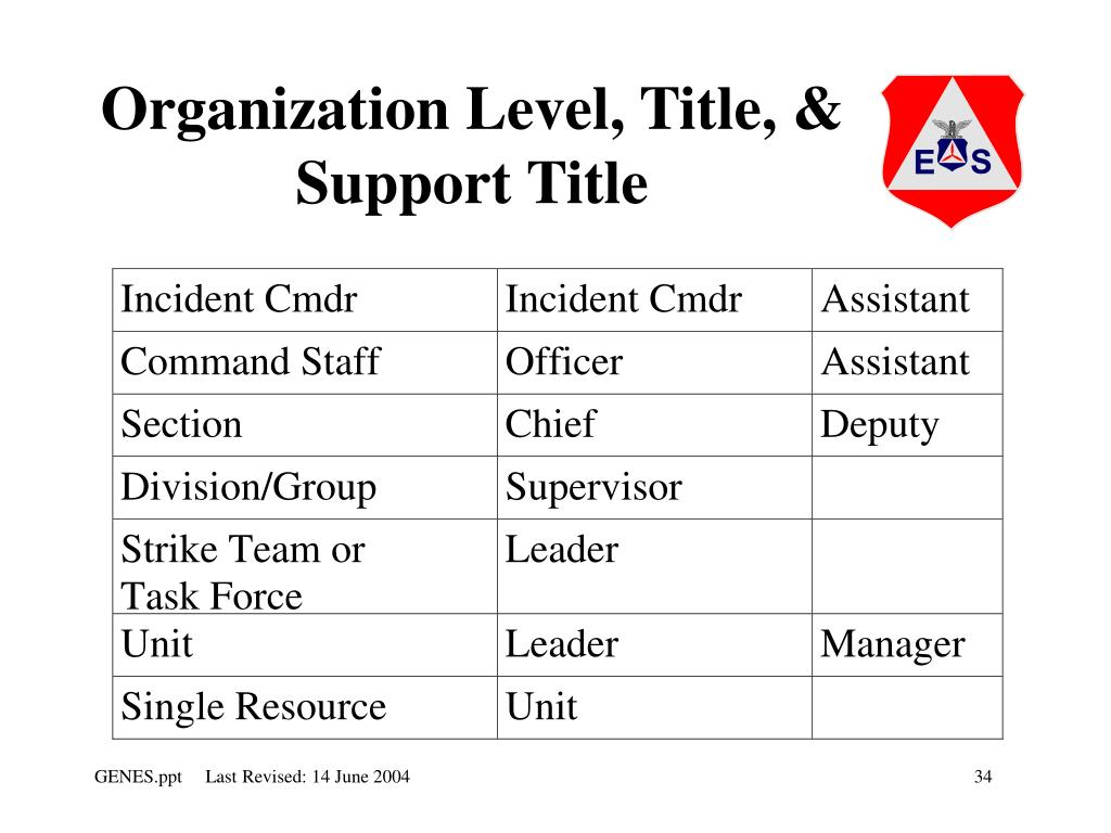 Organization Level, Title, & Support Title