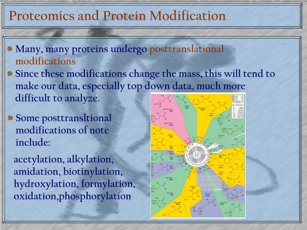 Proteomics and Protein Modification