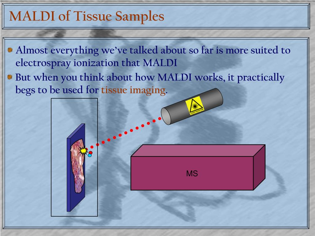 MALDI of Tissue Samples