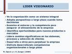 lider visionario