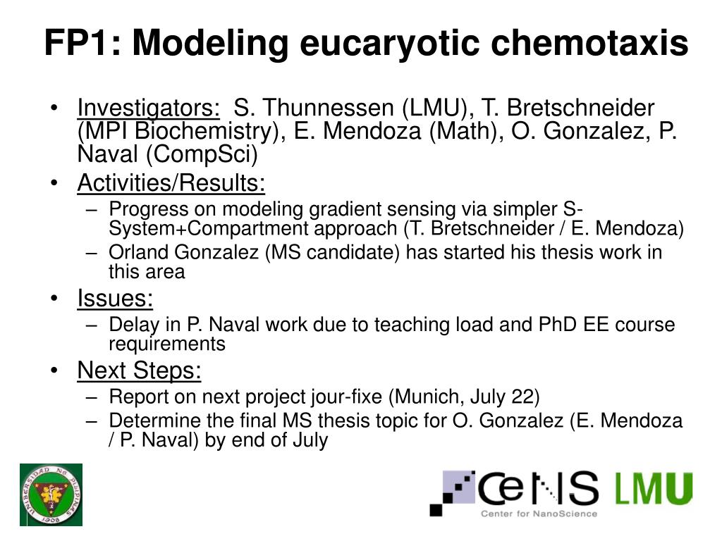 FP1: Modeling eucaryotic chemotaxis