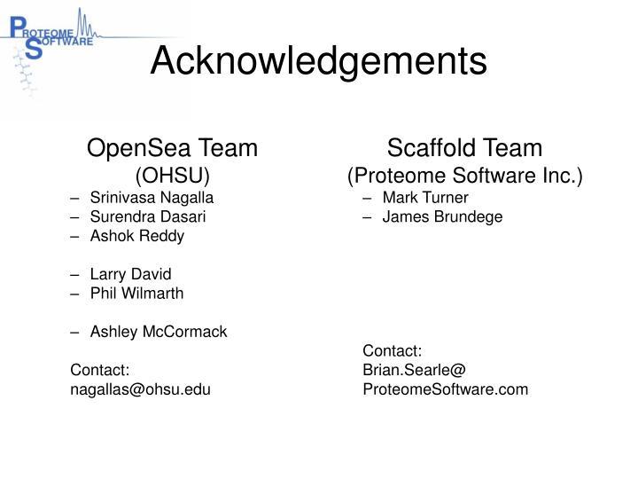 OpenSea Team