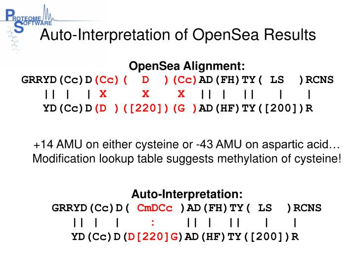 Auto-Interpretation of OpenSea Results