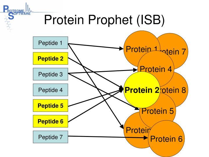 Protein Prophet (ISB)