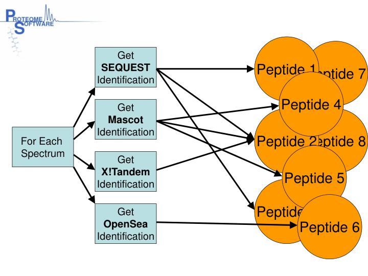 Peptide 1
