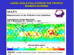 large scale pollution in the tropics biomass burning