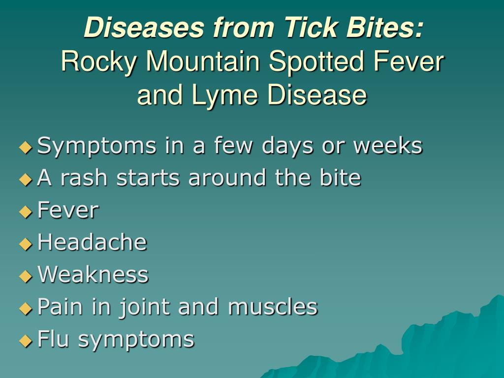 Diseases from Tick Bites: