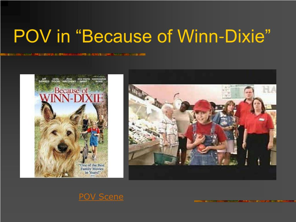 "POV in ""Because of Winn-Dixie"""