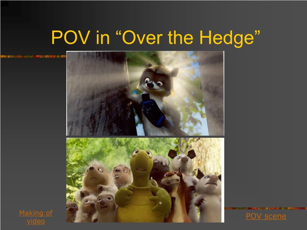 "POV in ""Over the Hedge"""