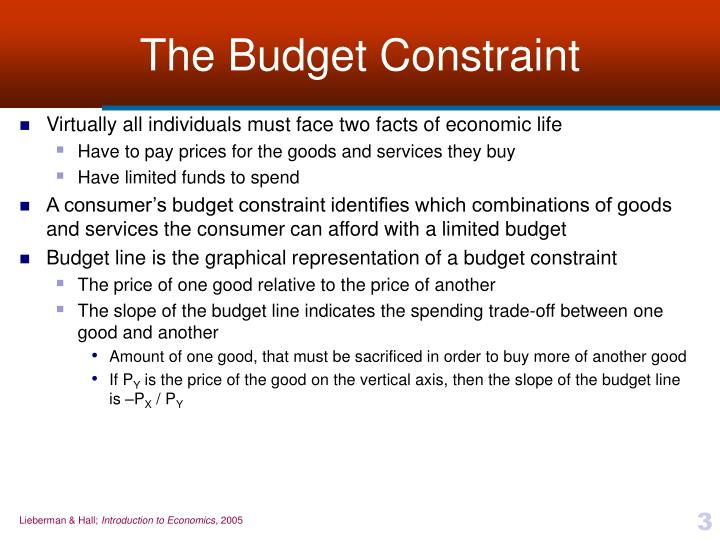 The budget constraint