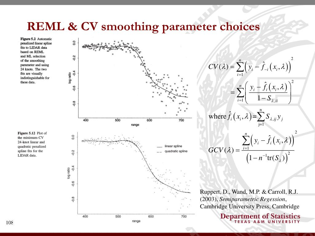REML & CV smoothing parameter choices