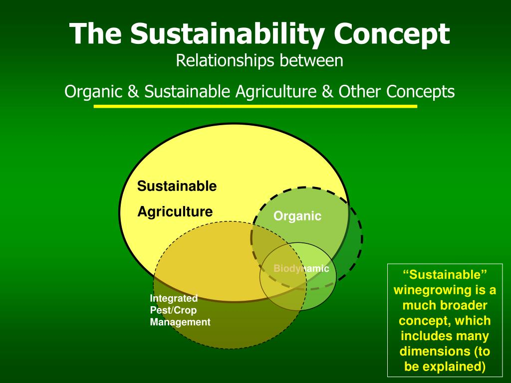 sustainability concepts Sustainability management in business enterprises concepts and instruments for sustainable organisation development commissioned by the federal ministry for the.