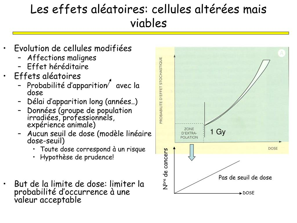 Les effets aléatoires: cellules altérées mais viables