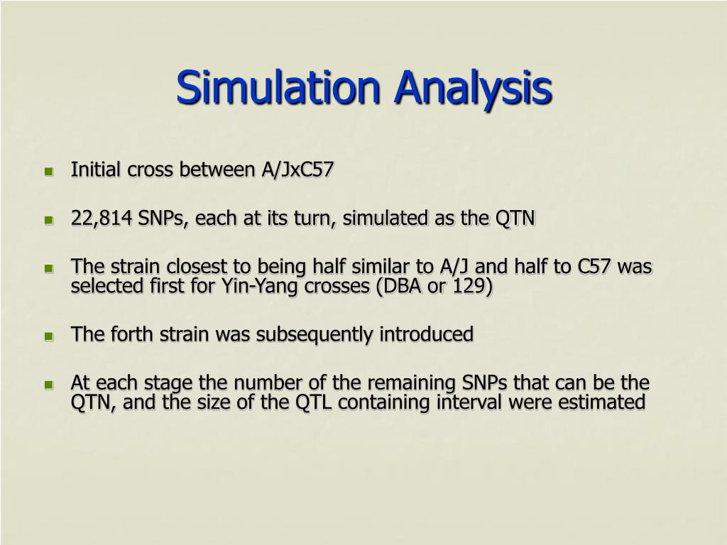 Simulation Analysis
