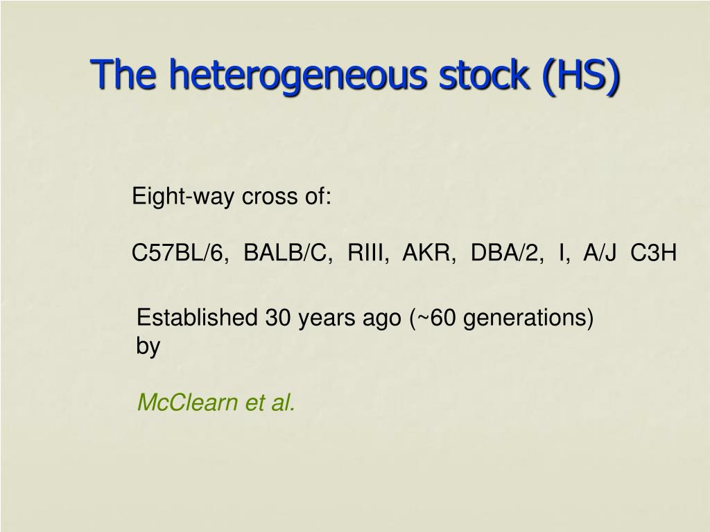The heterogeneous stock (HS)