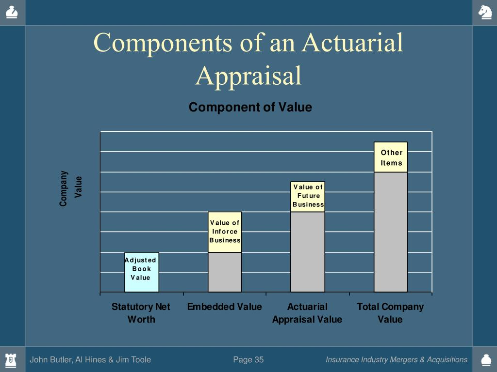 Components of an Actuarial Appraisal