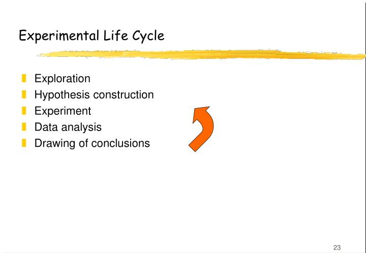 Experimental Life Cycle