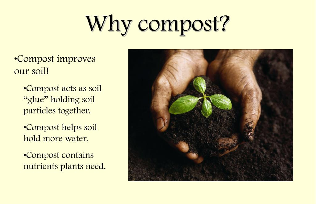 Compost improves our soil!