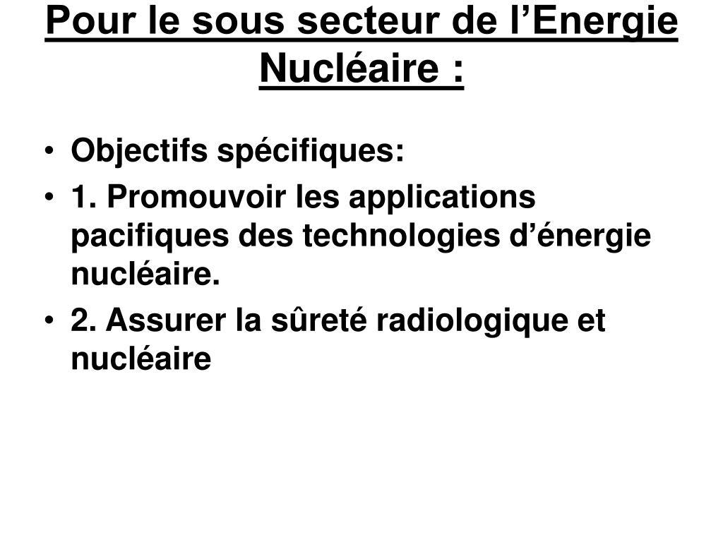 Pour le sous secteur de l'Energie Nucléaire: