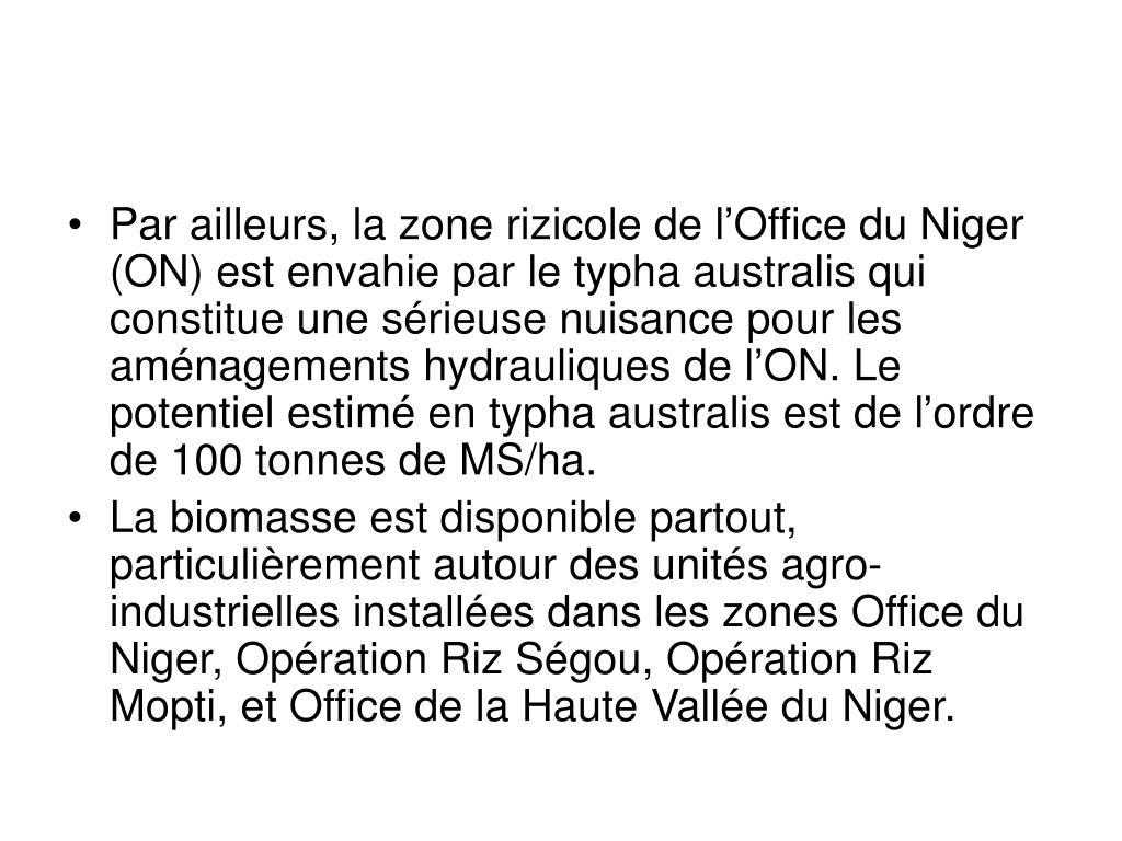 Par ailleurs, la zone rizicole de l'Office du Niger (ON) est envahie par le typha australis qui constitue une sérieuse nuisance pour les aménagements hydrauliques de l'ON. Le potentiel estimé en typha australis est de l'ordre de 100 tonnes de MS/ha.
