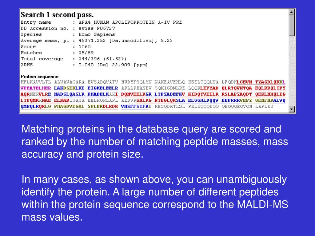 Matching proteins in the database query are scored and ranked by the number of matching peptide masses, mass accuracy and protein size.