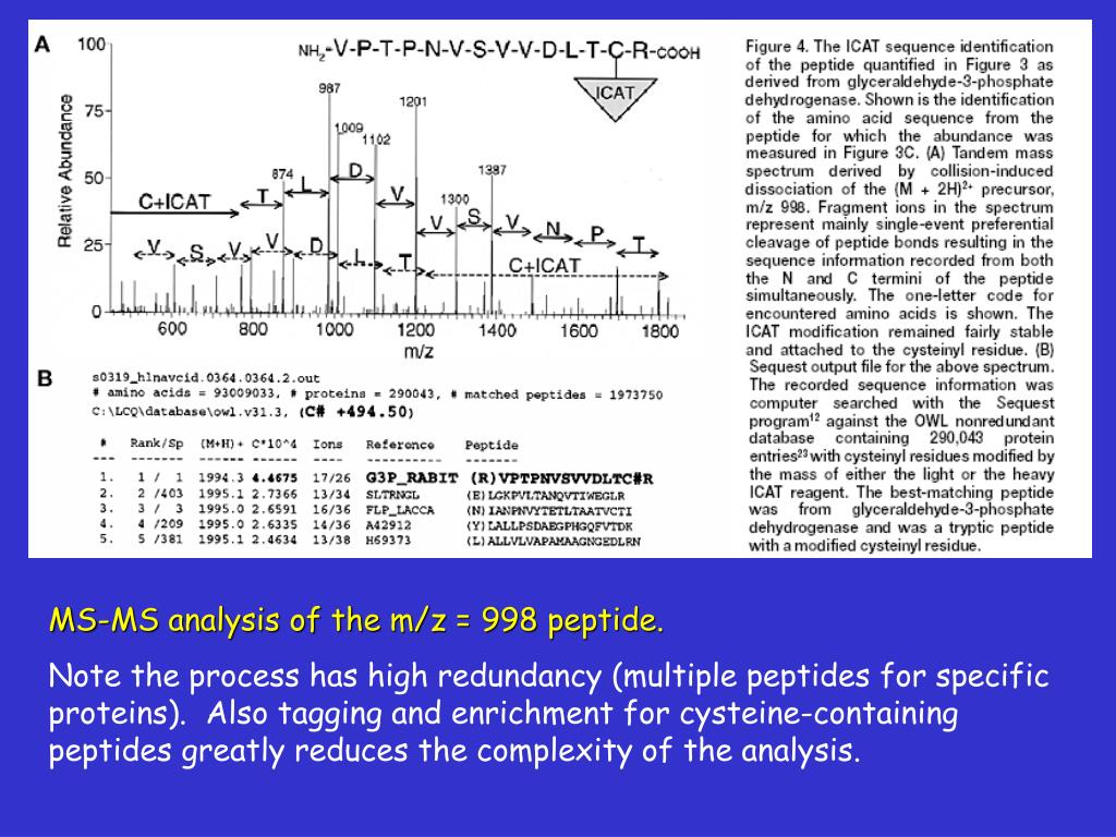 MS-MS analysis of the m/z = 998 peptide.