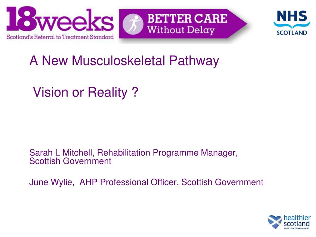 A New Musculoskeletal Pathway