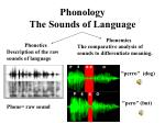 phonology the sounds of language
