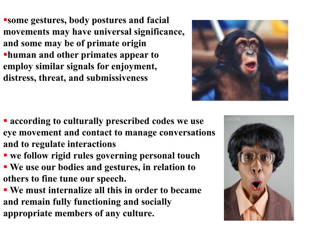 some gestures, body postures and facial movements may have universal significance, and some may be of primate origin