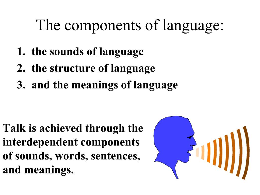 The components of language: