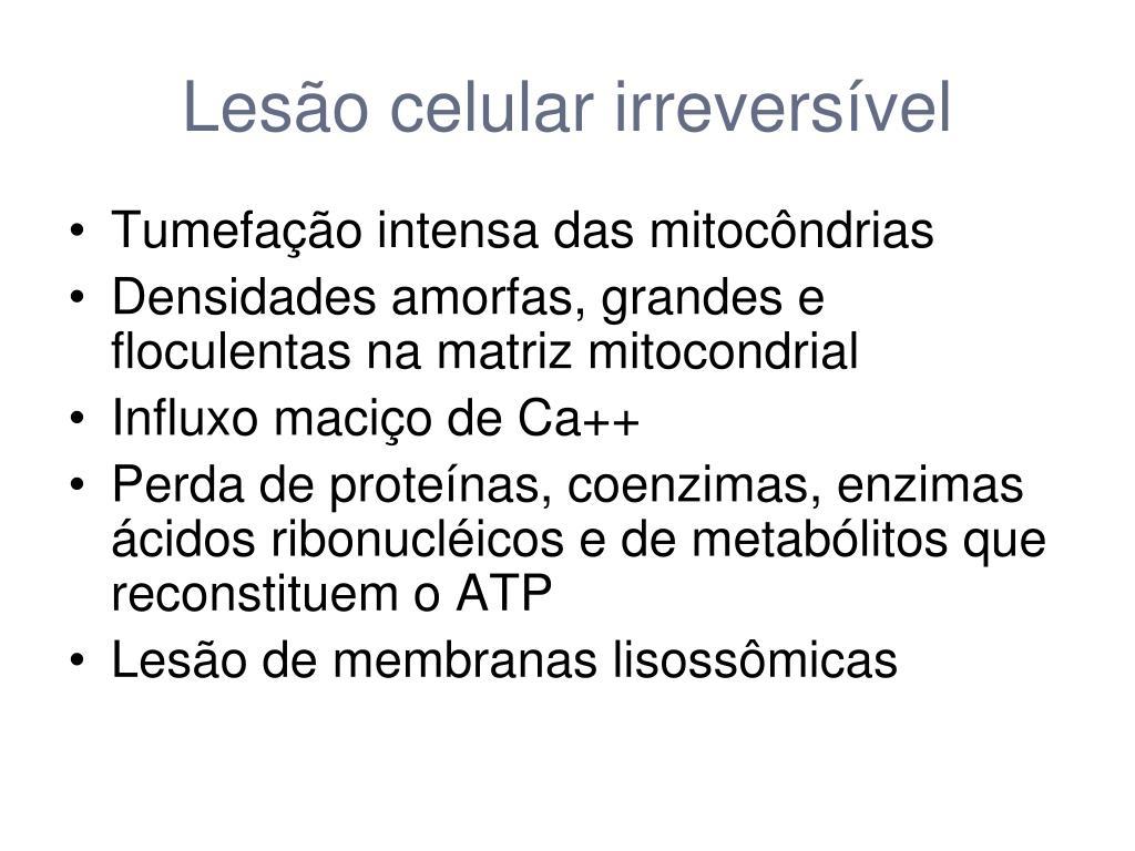 Lesão celular irreversível