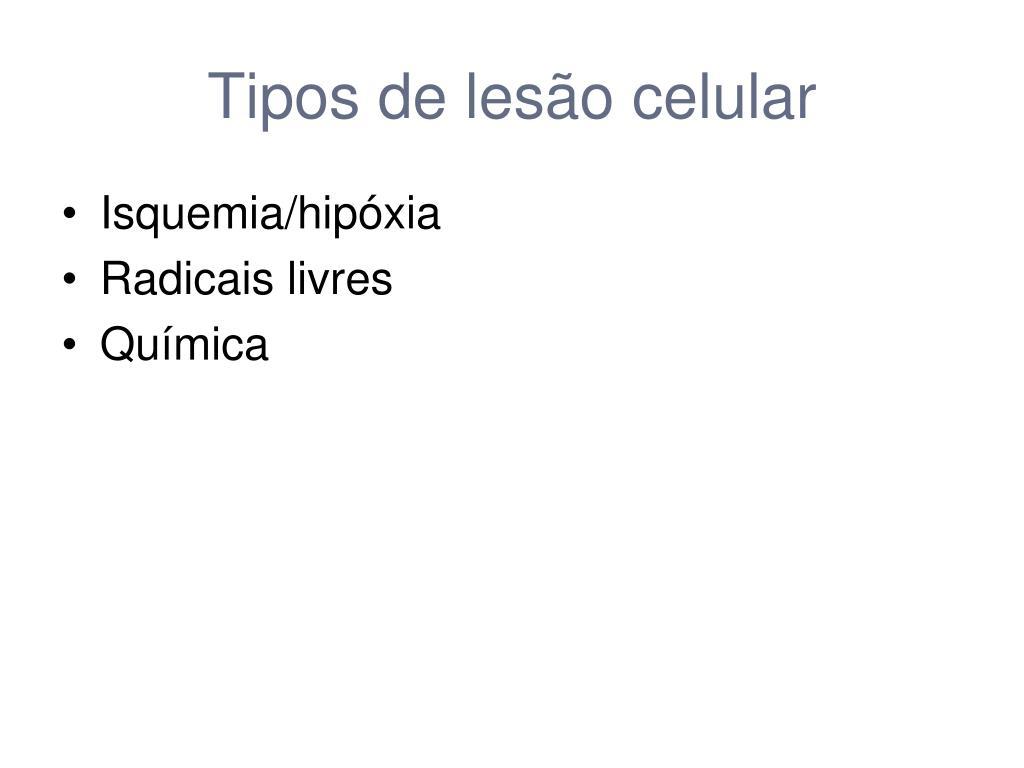 Tipos de lesão celular