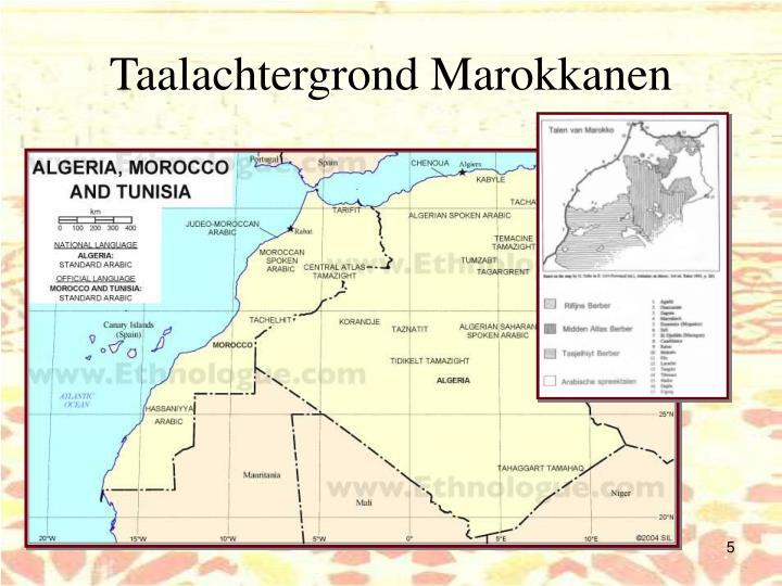 Taalachtergrond Marokkanen