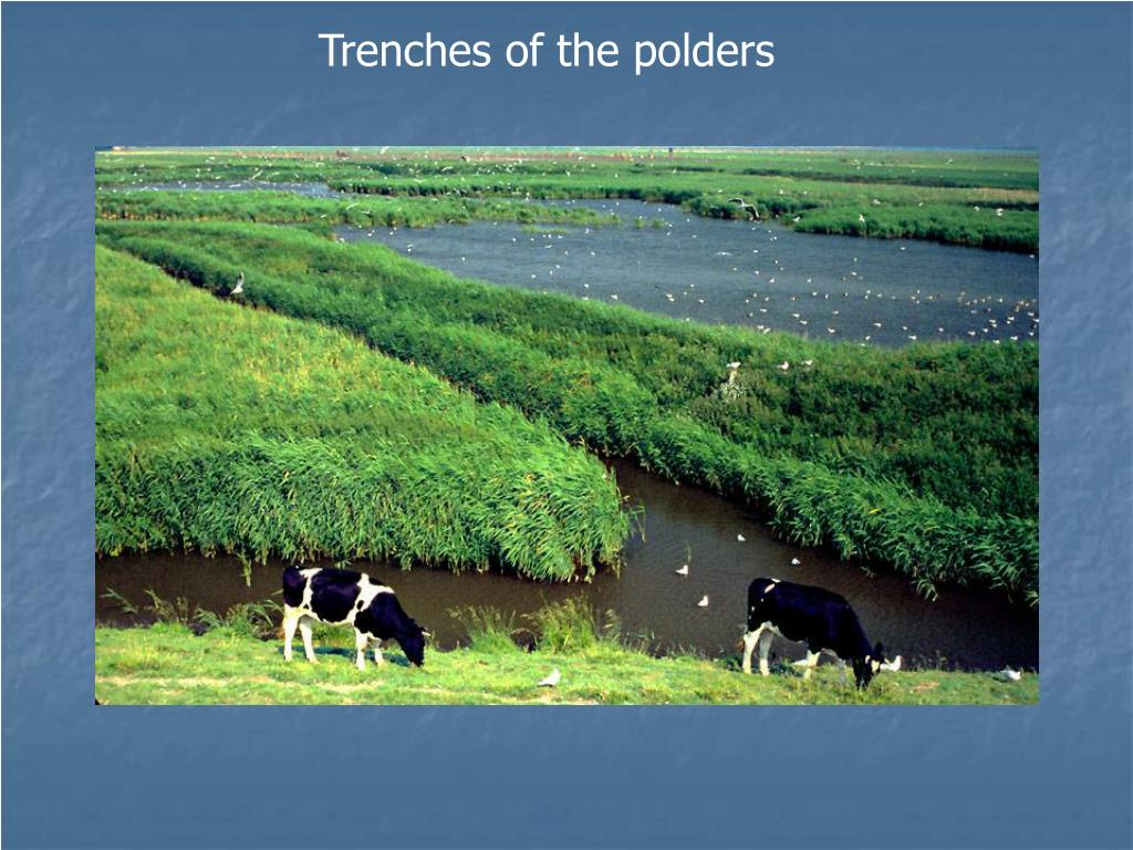 Trenches of the polders