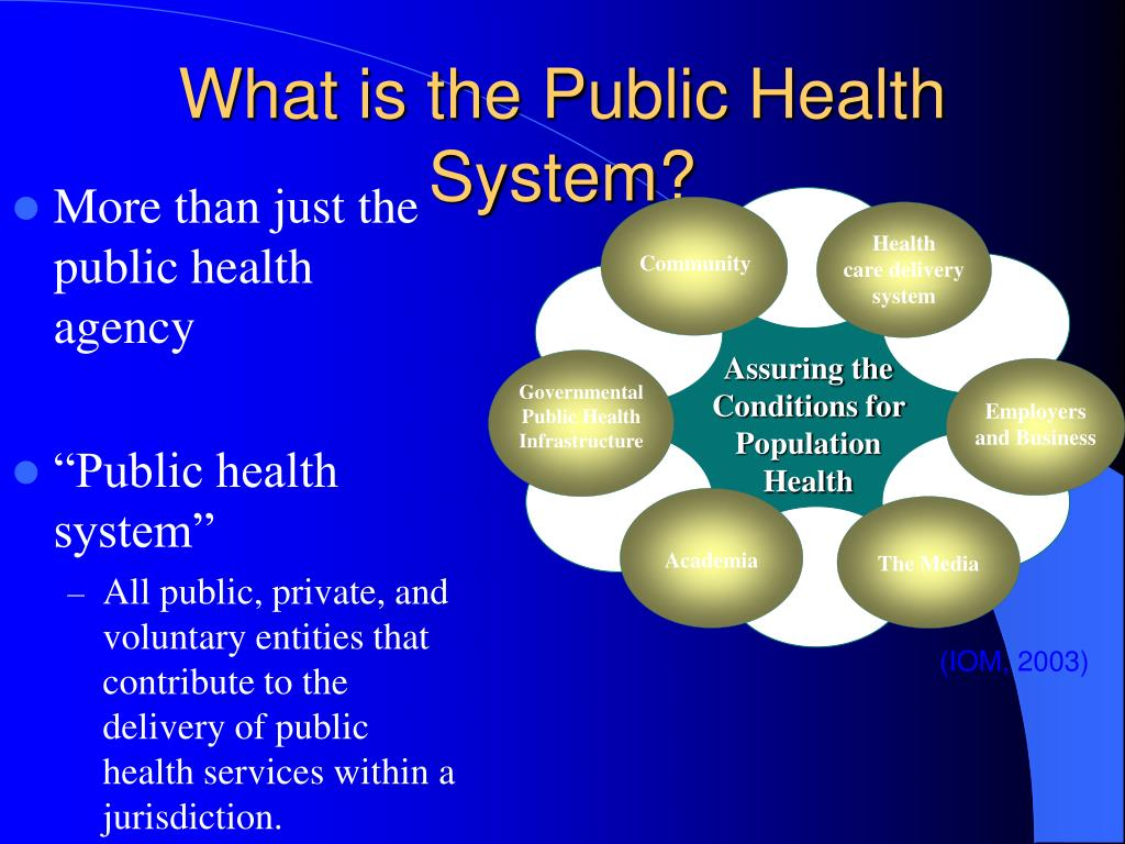 What is the Public Health System?