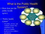 what is the public health system