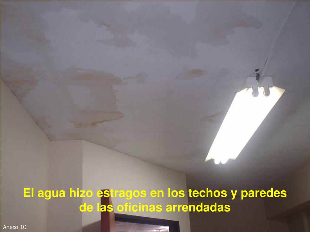 El agua hizo estragos en los techos y paredes