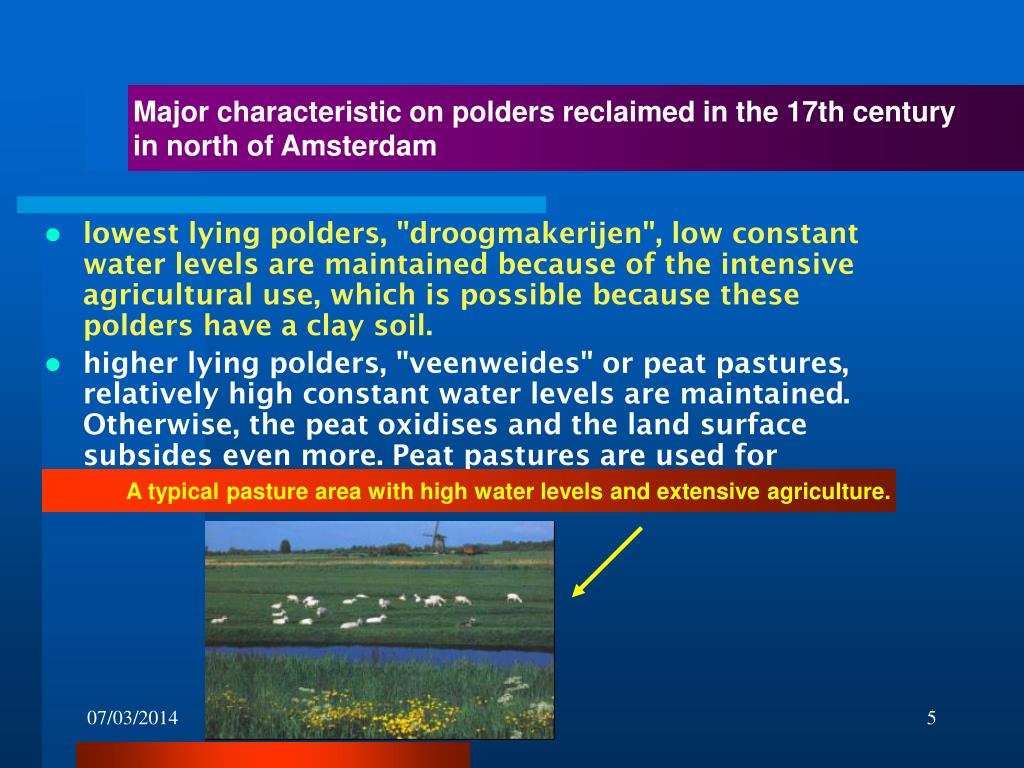 Major characteristic on polders reclaimed in the 17th century