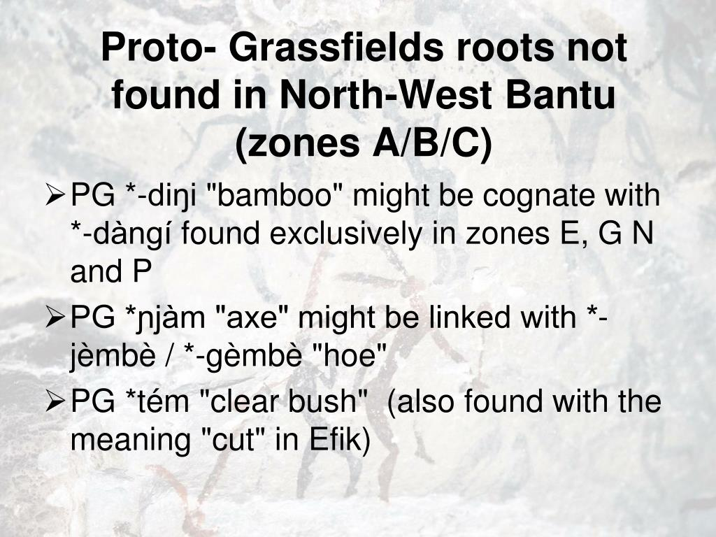 Proto- Grassfields roots not found in North-West Bantu (zones A/B/C)