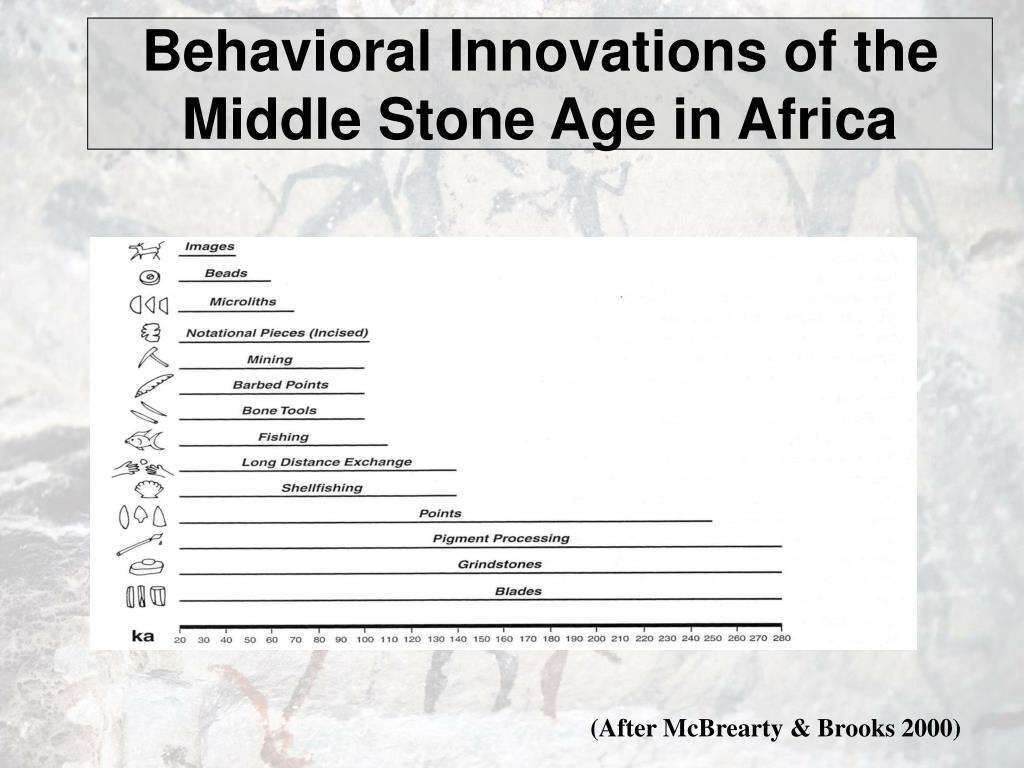 Behavioral Innovations of the Middle Stone Age in Africa