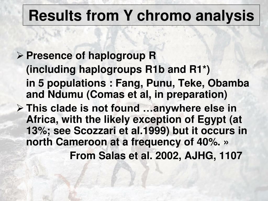 Results from Y chromo analysis