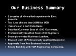 our business summary